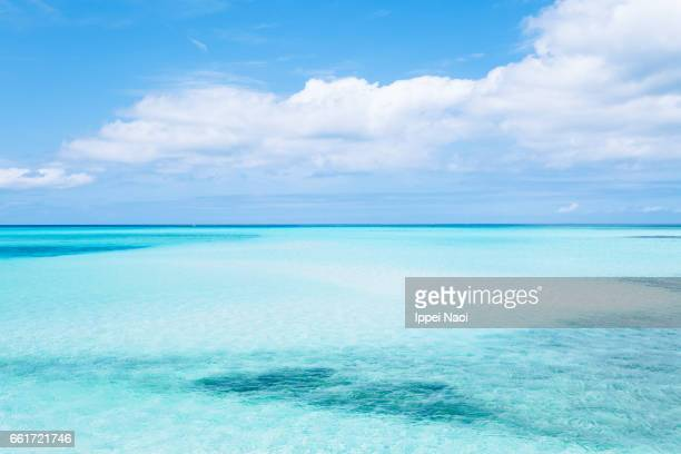 scenic view of clear tropical water of coral reef lagoon - horizont über wasser stock-fotos und bilder