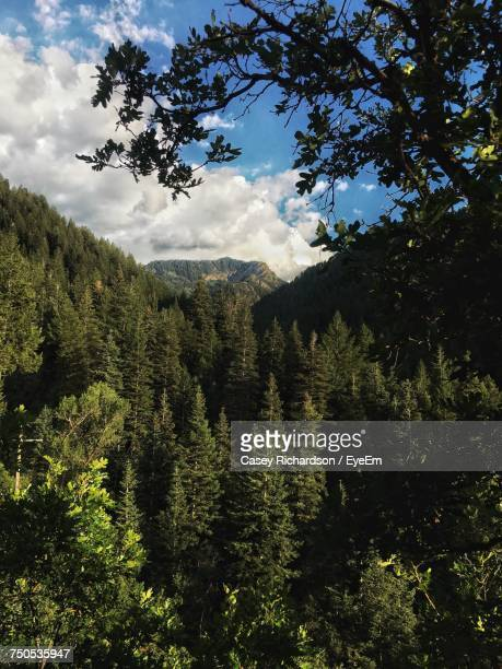 Scenic View Of Cloudy Sky Over Mountains