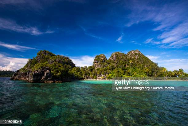 scenic view of coastline of forested island, misool, raja ampat, indonesia - raja ampat islands stock photos and pictures