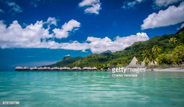 scenic view of coastline, tahiti, french polynesia - タヒチ ストックフォトと画像