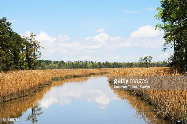 scenic view of countryside landscape - solomon turkel stock pictures, royalty-free photos & images