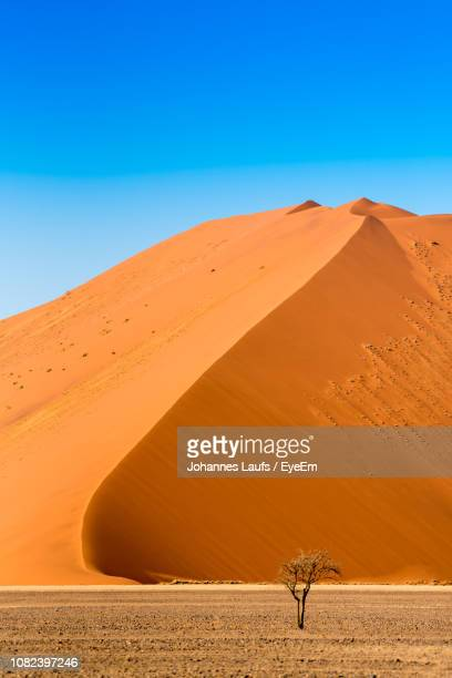 scenic view of desert against clear blue sky - ナミブ砂漠 ストックフォトと画像