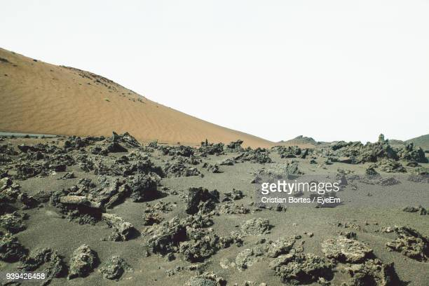 scenic view of desert against clear sky - bortes ストックフォトと画像