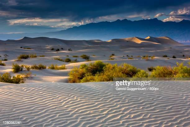 scenic view of desert against sky during sunset - gerold guggenbuehl stock-fotos und bilder