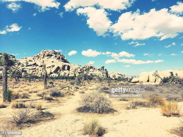 scenic view of desert against sky - hutton stock photos and pictures