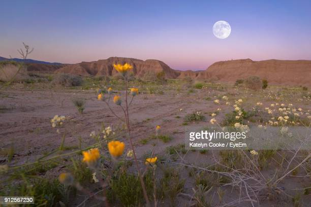 scenic view of desert against sky - anza borrego desert state park stock pictures, royalty-free photos & images
