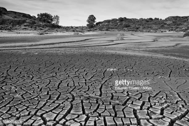 scenic view of desert against sky,extremadura,spain - blanco y negro stock-fotos und bilder