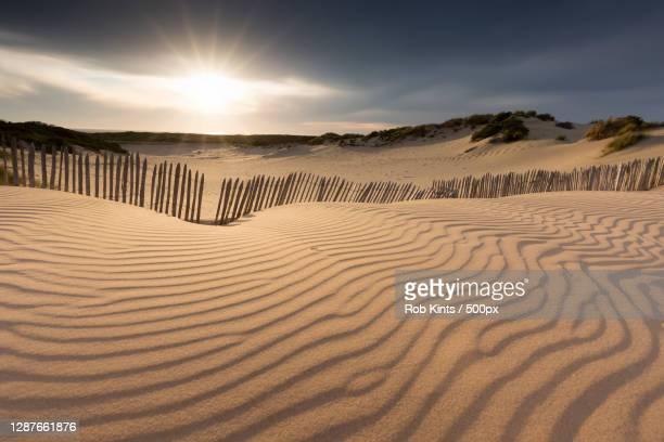 scenic view of desert against sky,kijkduin,den haag,netherlands - scheveningen stock pictures, royalty-free photos & images