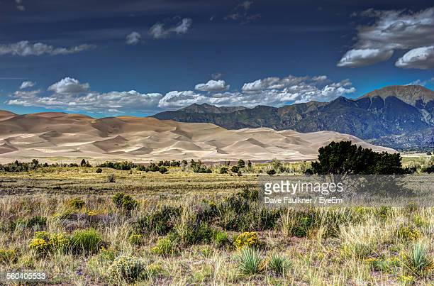 Scenic View Of Desert And Field By Mountains Against Sky