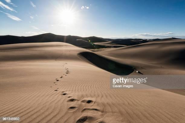 Scenic view of desert landscape on sunny day