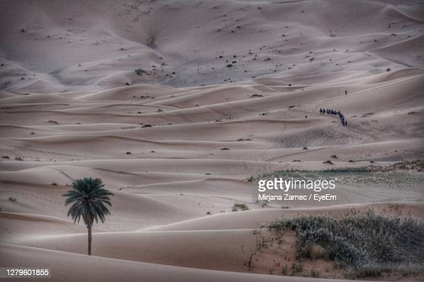 scenic view of desert - casablanca morocco stock pictures, royalty-free photos & images