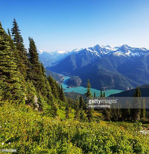 scenic view of diablo lake and mountains - diablo lake imagens e fotografias de stock