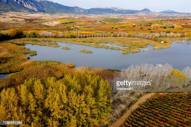 scenic view of ebro river by landscape during autumn - haro photos et images de collection