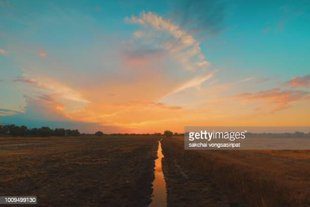 scenic view of farm against sky during sunset, thailand - avondschemering stockfoto's en -beelden
