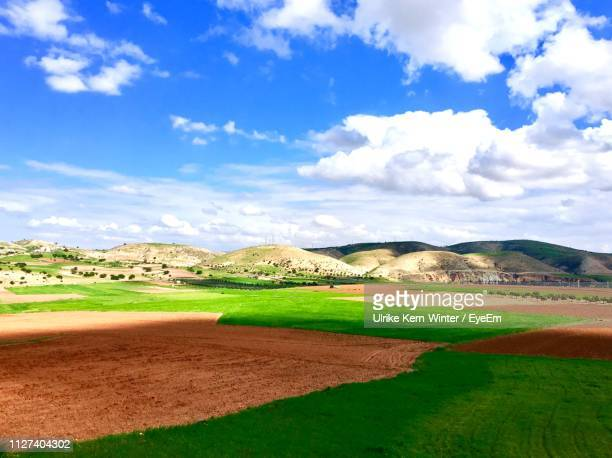 scenic view of farm against sky - north africa stock pictures, royalty-free photos & images
