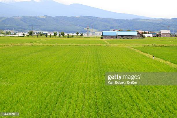Scenic View Of Farm Field Against Mountains