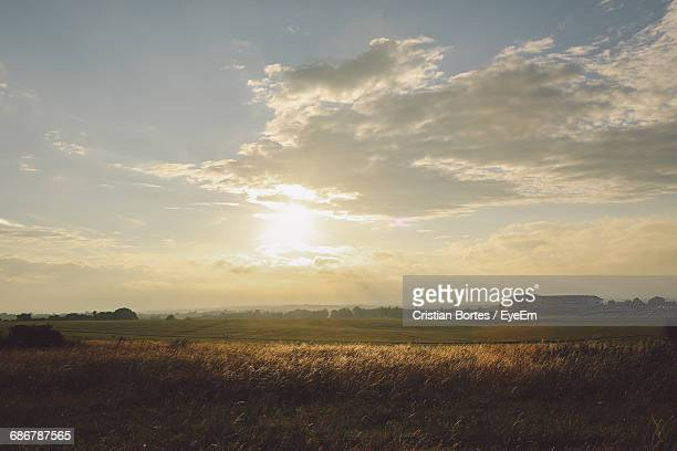 scenic view of farm field at epsom downs racecourse against sky during sunset - bortes stockfoto's en -beelden