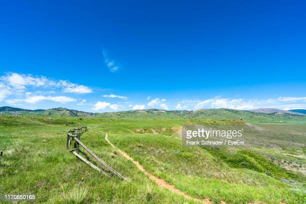 scenic view of field against blue sky - frank schrader stock pictures, royalty-free photos & images