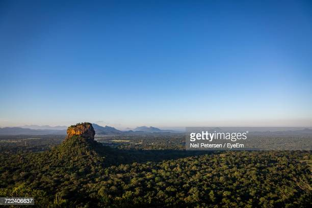 scenic view of field against blue sky - sigiriya stock photos and pictures