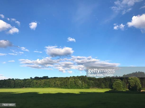 scenic view of field against blue sky - rachel wolfe stock pictures, royalty-free photos & images