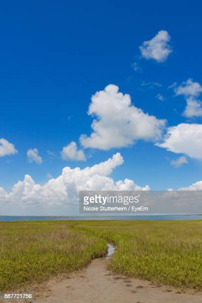 scenic view of field against blue sky - stutterheim stock photos and pictures