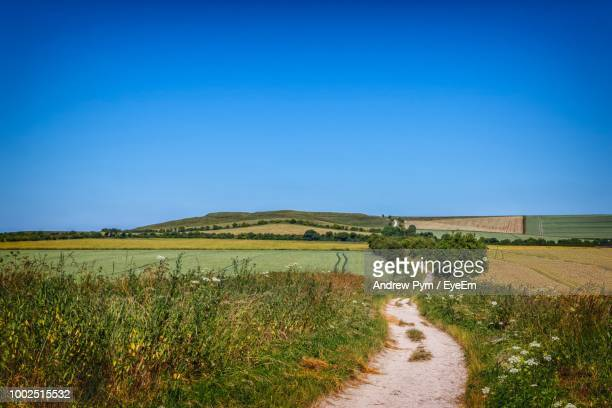 scenic view of field against clear blue sky - luton stock pictures, royalty-free photos & images