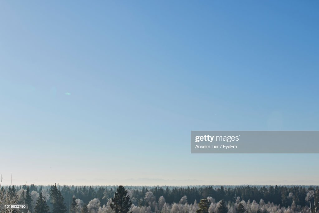 Scenic View Of Field Against Clear Blue Sky : Stock-Foto