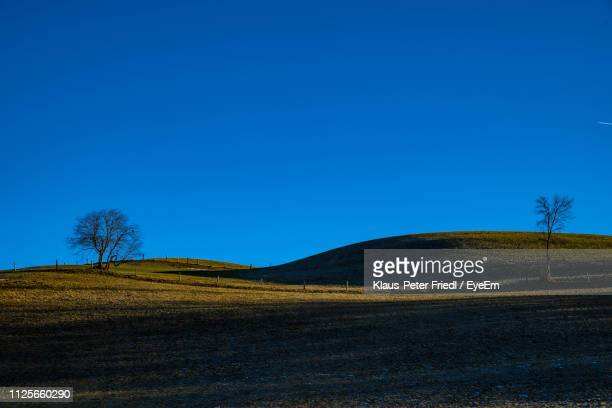 scenic view of field against clear blue sky - saalfelden stock pictures, royalty-free photos & images