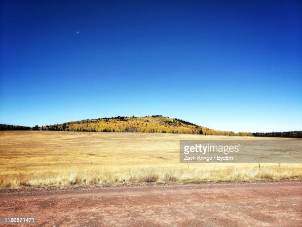 scenic view of field against clear blue sky - krings stock pictures, royalty-free photos & images