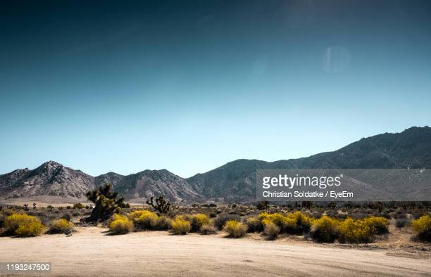 scenic view of field against clear blue sky - christian soldatke stock pictures, royalty-free photos & images