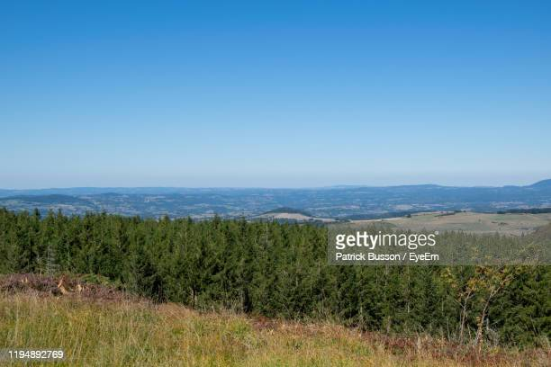 scenic view of field against clear blue sky - auvergne rhône alpes stock pictures, royalty-free photos & images
