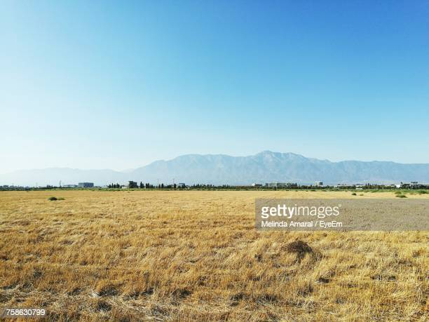 scenic view of field against clear blue sky - san bernardino california stock pictures, royalty-free photos & images