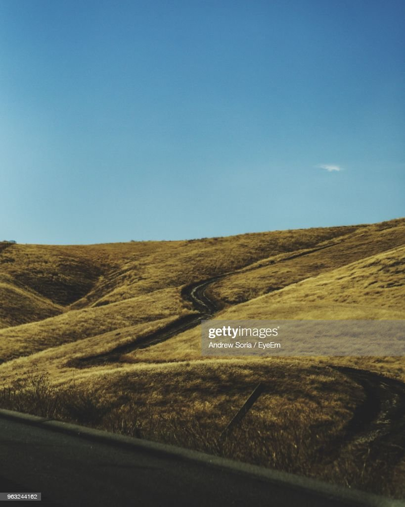 Scenic View Of Field Against Clear Blue Sky : Stock Photo