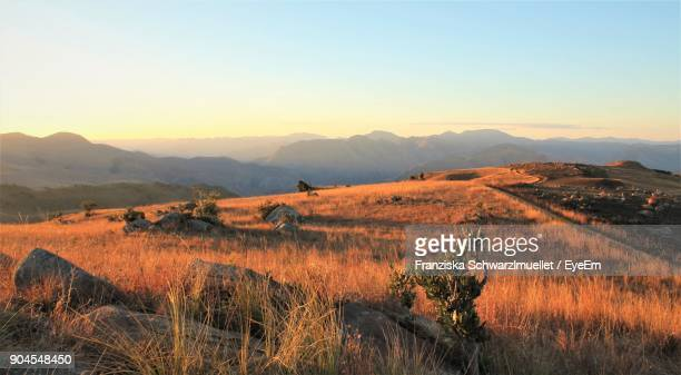 scenic view of field against clear sky during sunset - swaziland fotografías e imágenes de stock