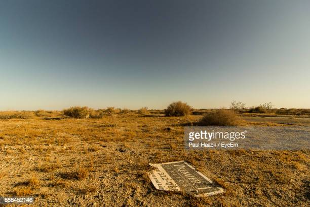 scenic view of field against clear sky - haack stock pictures, royalty-free photos & images