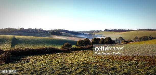 scenic view of field against clear sky - paddock stock photos and pictures