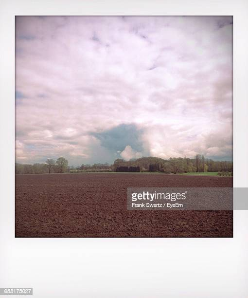 scenic view of field against cloudy sky - frank swertz stock-fotos und bilder