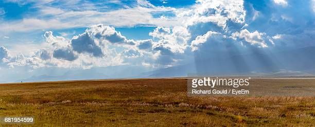 scenic view of field against cloudy sky - ワイドショット ストックフォトと画像