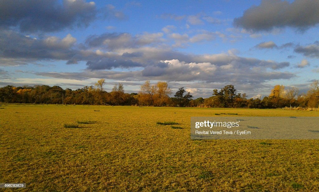 Scenic View Of Field Against Cloudy Sky : Stock Photo