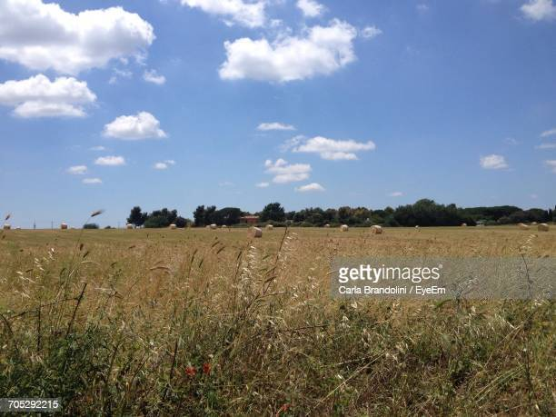 scenic view of field against cloudy sky - ciampino airport stock photos and pictures