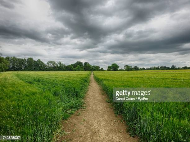scenic view of field against cloudy sky - aylesbury stock photos and pictures
