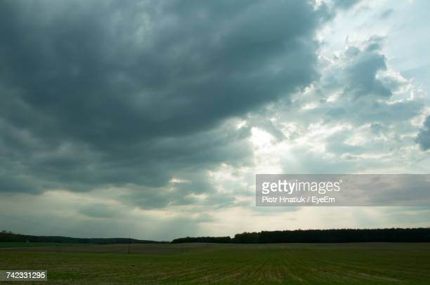 scenic view of field against cloudy sky - piotr hnatiuk foto e immagini stock