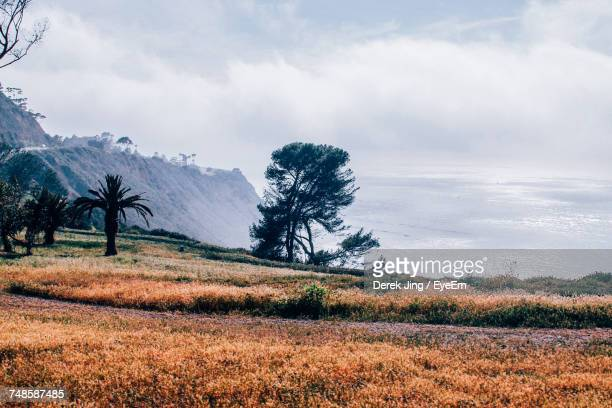 scenic view of field against cloudy sky - rancho palos verdes stock pictures, royalty-free photos & images