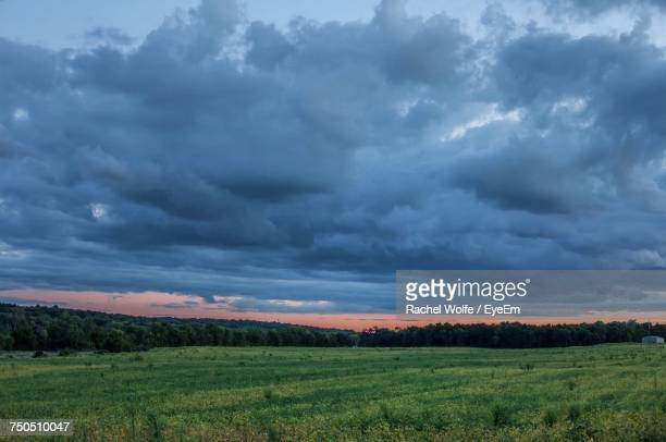 scenic view of field against cloudy sky - rachel wolfe stock pictures, royalty-free photos & images