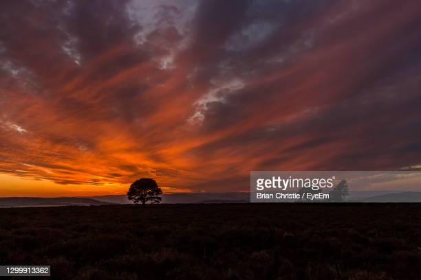 scenic view of field against dramatic sky during sunset - dundee scotland stock pictures, royalty-free photos & images