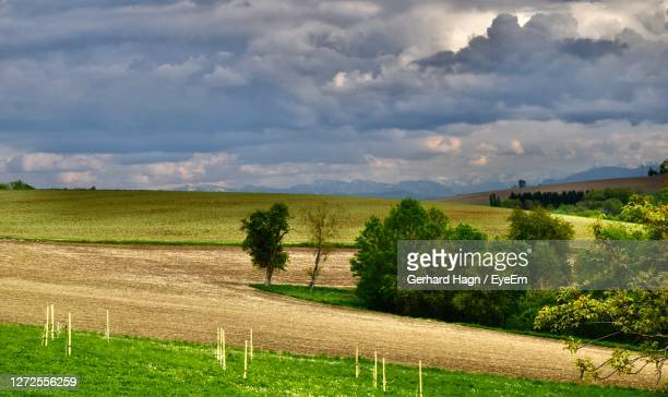 scenic view of field against mountain range and cloudy sky - gerhard hagn stock-fotos und bilder