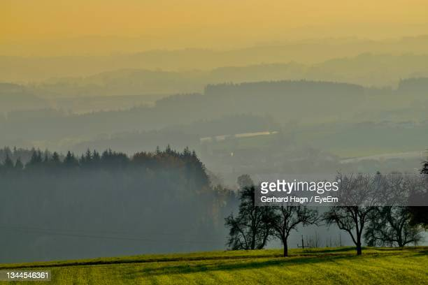 scenic view of field against sky during foggy weather - gerhard hagn stock-fotos und bilder