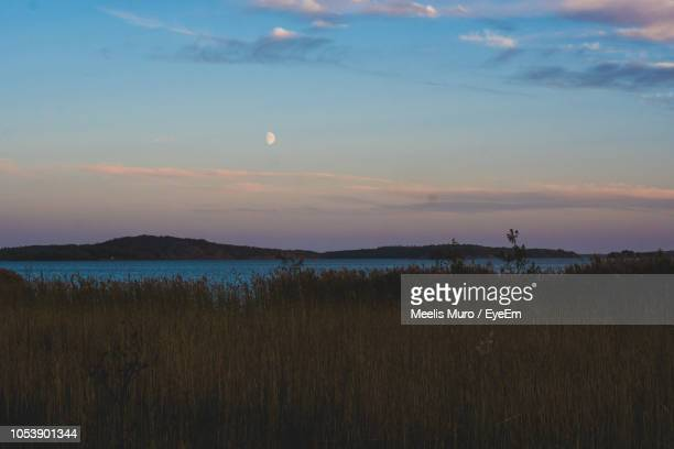 scenic view of field against sky during sunset - muro stock photos and pictures