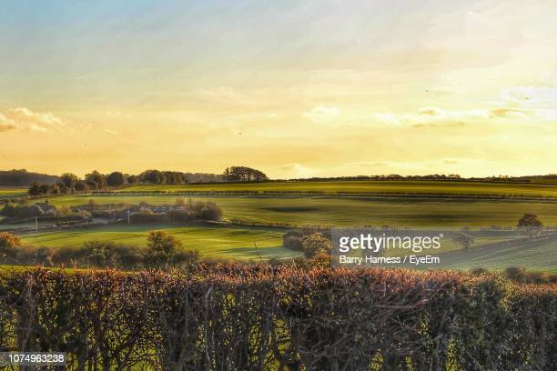 scenic view of field against sky during sunset - lincolnshire stock pictures, royalty-free photos & images