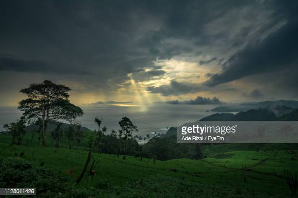 scenic view of field against sky during sunset - ade rizal stock photos and pictures